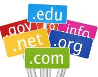 Domain Name Registration for Dummies
