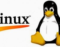 CloudLinux Partners with KernelCare for Automatic Linux Server Reboots and Security Patches