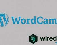 Why WiredTree is a Global Sponsor of WordCamp Events