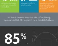 IT Security Pros and Network Operators View DDoS Attacks as an Increased Concern in 2017